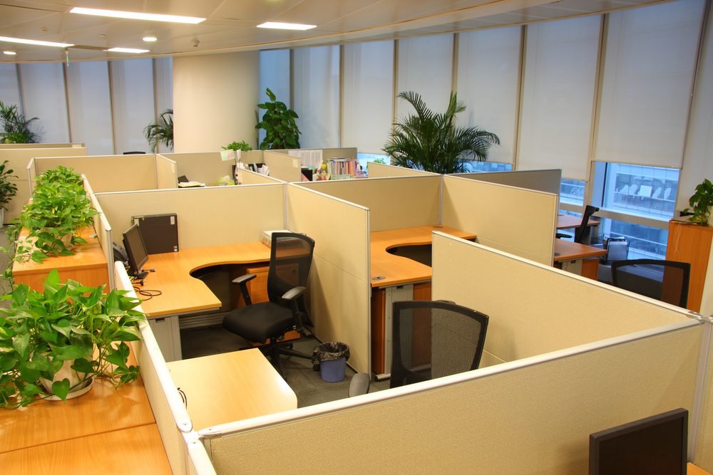 cubicle decorating ideas decor for office